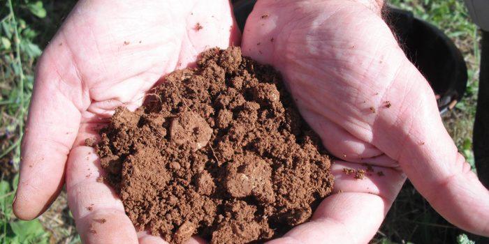 Sol-vivant-cda-agro-ecologie