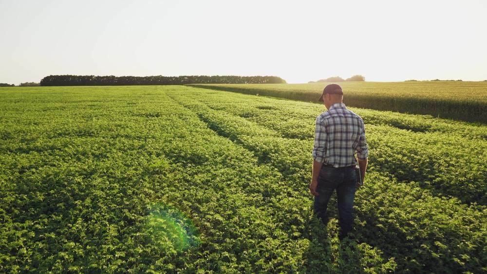 agriculture-et-agroecologie