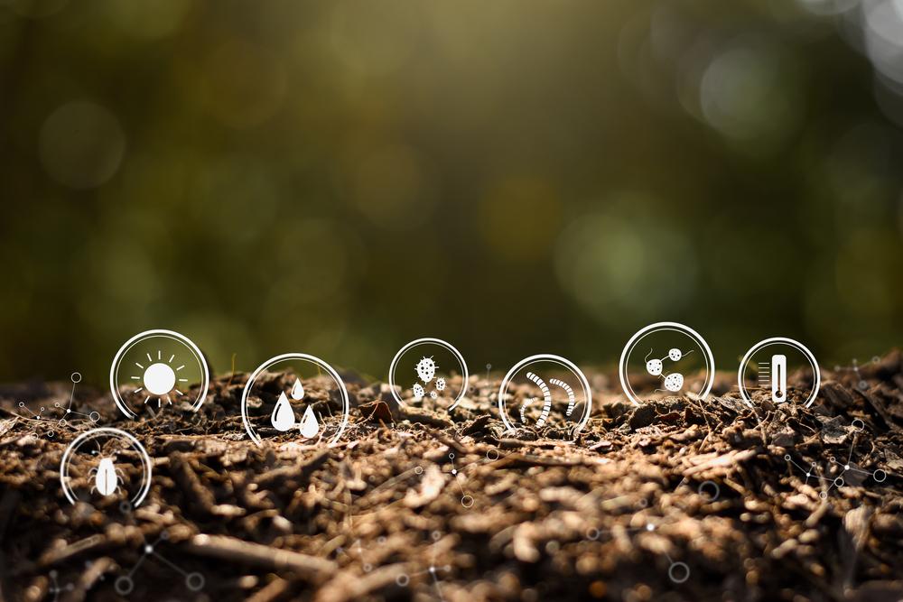 Les Bioindicateurs : L'indicateur Naturel De La Pollution De L'environnement