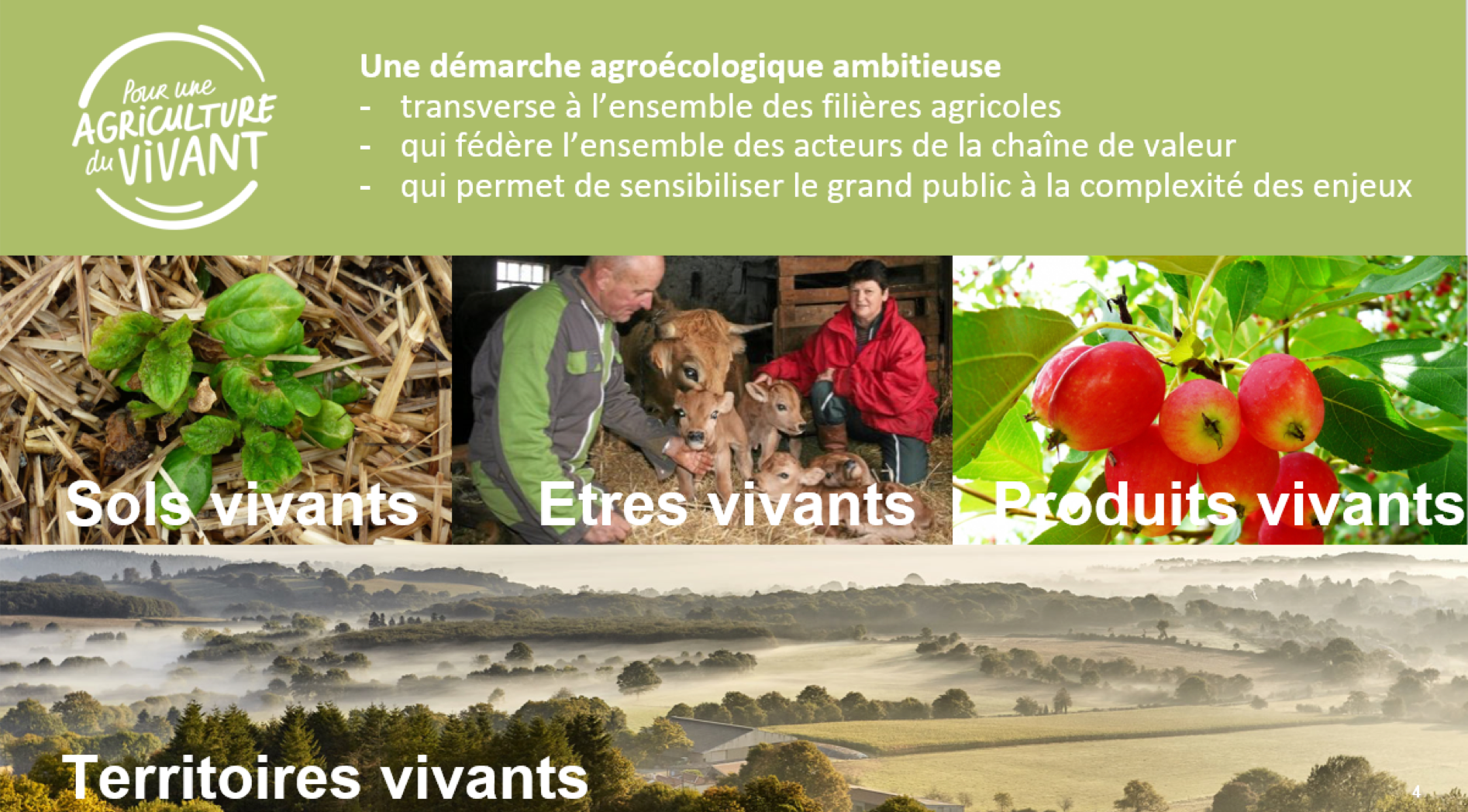 agronomes