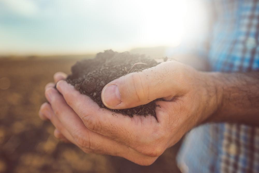 agriculture-de-demain